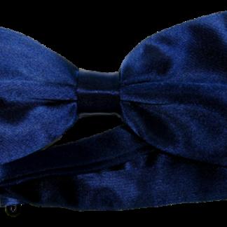 Blå enfärgad fluga